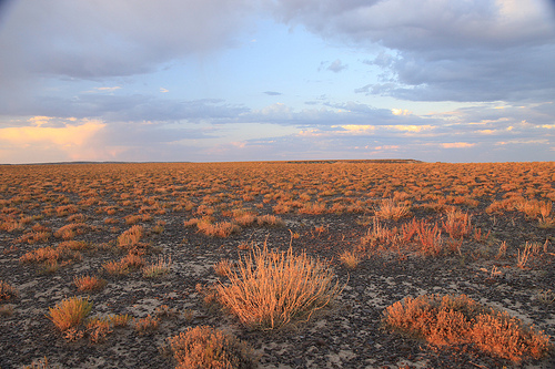 Sunset on the sagebrush ocean.  Photo: Flikr, Trekok.