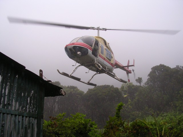 helicopter leaving with the Po'ouli
