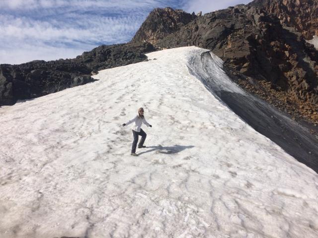 Grasshopper Glacier, a shadow of its former self