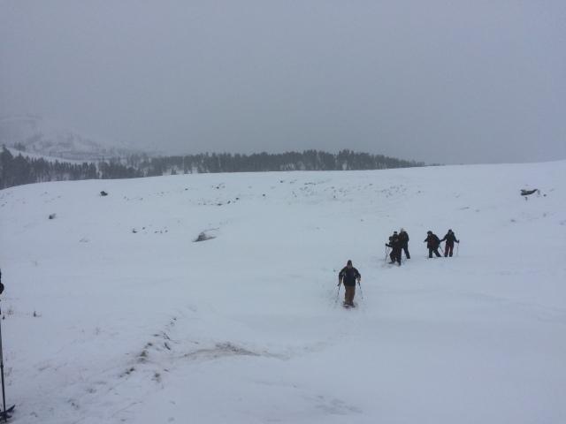 Snowshoeing Lamar Valley