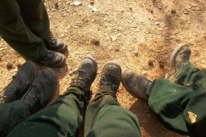 dem-boots