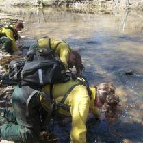 Ritual dunking at Pigeon Creek, Sprewell Bluff, West Georgia.