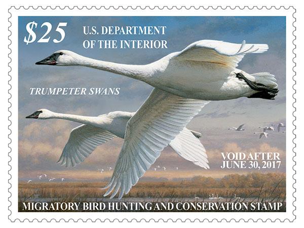 2016-2017 Federal Duck Stamp.jpg